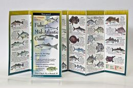 The Ultimate Guide to Fishes of the Mid-Atlantic Coast