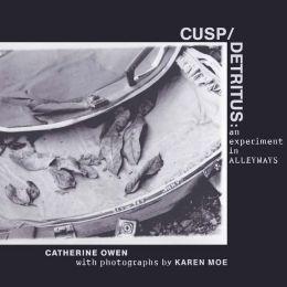 Cusp/detritus: an experiment in alleyways