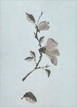 Spirit of Nature Mini Notebook