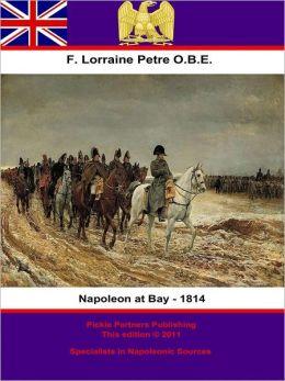 Napoleon at Bay - 1814