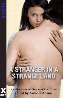 A Stranger in a Strange Land: A collection of five erotic stories