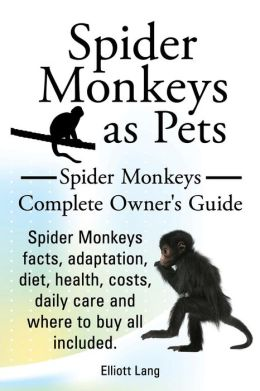 Spider Monkeys as Pets. Spider Monkeys Facts, Adaptation, Diet, Health, Costs, Daily Care and Where to Buy All Included. Spider Monkeys Complete Owner