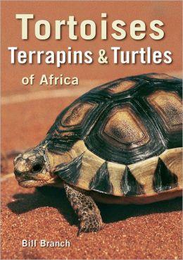 Tortoises, Terrapins & Turtles of Africa (PagePerfect NOOK Book)