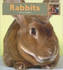 My First Look At: Rabbits