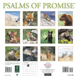 2014 Psalms of Promise Wall Calendar