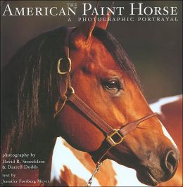 The American Paint Horse: A Photographic Portrayal