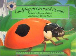 Ladybug at Orchard Avenue (Smithsonian's Backyard Series)