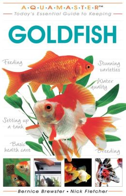 Today's Essential Guide to Keeping Goldfish