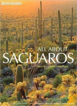 All About Saguaros: Facts, Lore, Photos