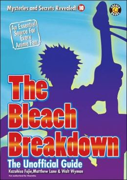 The Bleach Breakdown: The Unofficial Guide