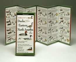 Sibley's Ducks, Geese & Swans of Eastern North America