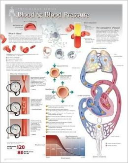 Blood & Blood Pressure Wall Chart: 8160