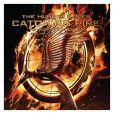Book Cover Image. Title: 2014 The Hunger Games Catching Fire Wall Calendar, Author: NECA