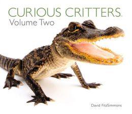 Curious Critters Volume Two