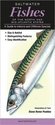 Saltwater Fishes of the Northern and Mid-Atlantic States: A Guide to Inshore and Offshore Species