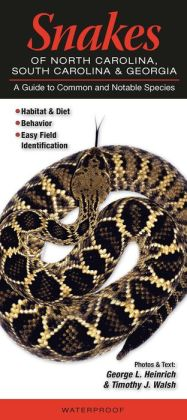 Snakes of North Carolina, South Carolina and Georgia: A Guide to Common and Notable Species