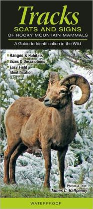 Tracks, Scats and Signs of Rocky Mountain Mammals: A Guide to Identification in the Wild