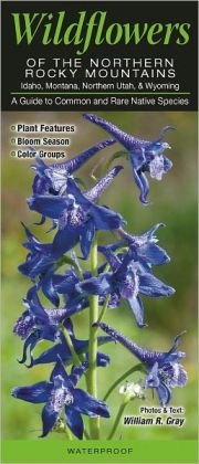 Wildflowers of the Northern Rocky Mountains: A Guide to Common and Notable Species