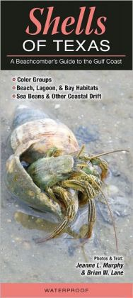 Shells of Texas: A Beachcomber's Guide to the Gulf Coast