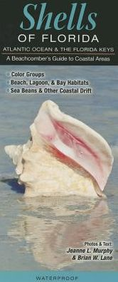 Shells of Florida/Atlantic Ocean and Florida Keys: A Beach Comber's Guide to Coastal Areas
