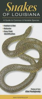 Snakes of Louisiana: A Guide to Common and Notable Species