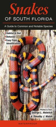 Snakes of South Florida: A Guide to Common and Notable Species