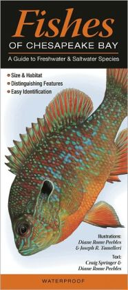 Fishes of Chesapeake Bay: A Guides to Freshtwater and Saltwater Species