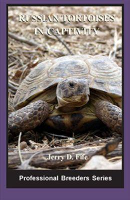 Russian Tortoises in Captivity