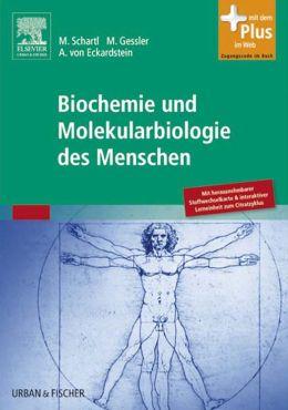 Biochemie und Molekularbiologie des Menschen