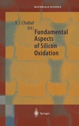 Fundamental Aspects of Silicon Oxidation