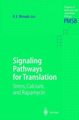 Signaling Pathways for Translation: Stress, Calcium, and Rapamycin