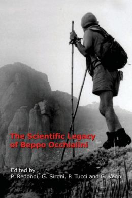 The Scientific Legacy of Beppo Occhialini