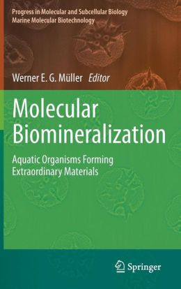 Molecular Biomineralization: Aquatic Organisms Forming Extraordinary Materials