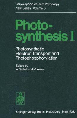 Photosynthesis I: Photosynthetic Electron Transport and Photophosphorylation
