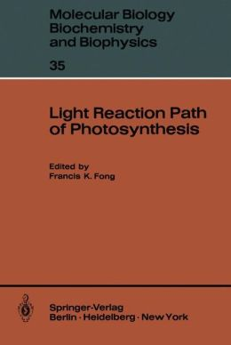 Light Reaction Path of Photosynthesis