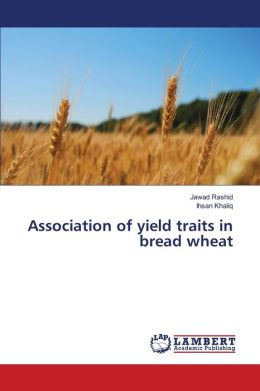 Association of Yield Traits in Bread Wheat