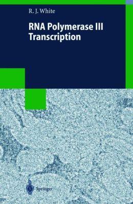 RNA Polymerase III Transcription
