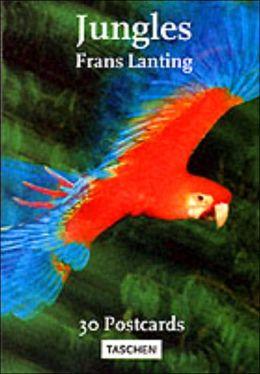 Lanting Jungles Postcards