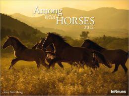 2012 Among Wild Horses Super Poster (Horizontal) Calendar