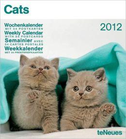 2012 Cats Weekly Postcard Calendar