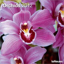 2012 Orchids Wall Calendar