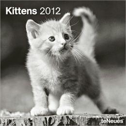 2012 Kittens Wall Calendar
