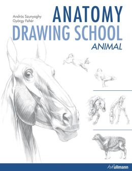 Anatomy Drawing School: Animal