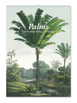 2012 Palms Large Wall Calendar