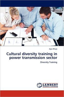 Cultural Diversity Training In Power Transmission Sector