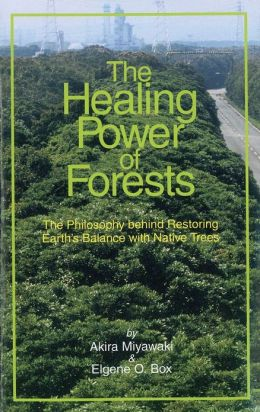 The Healing Power of Forests: The Philosophy Behind Restoring Earth's Balance with Native Trees