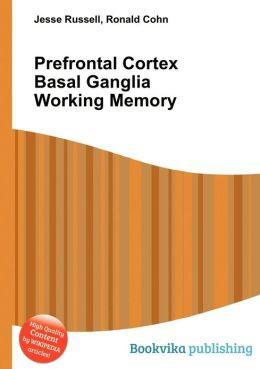 Prefrontal Cortex Basal Ganglia Working Memory