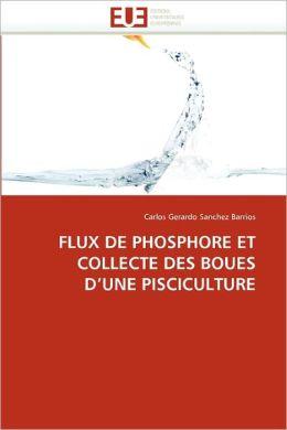Flux De Phosphore Et Collecte Des Boues D'Une Pisciculture