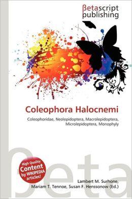 Coleophora Halocnemi