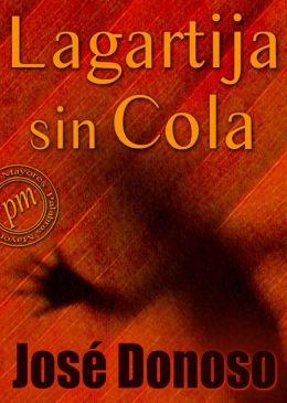 Lagartija sin cola
